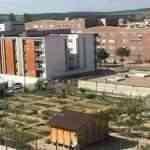 El 5 de noviembre finaliza la presentación de solicitudes para el uso de los huertos sociales de Cuenca